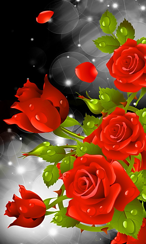 Red Rose Party Live Wallpaper Amazon Co Uk Appstore For