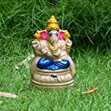 Puja N Pujari Eco Friendly Ganesha Idol for Ganesh Chaturthi Blue Color 6.5 Inch