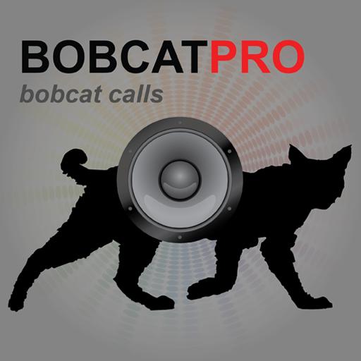real-bobcat-calls-app-for-bobcat-hunting-predator-hunting-ad-free-bluetooth-compatible
