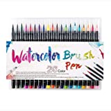 Scienish 20 Pieces Color Brush Pens Set Watercolor Brush Pen Color Markers for Painting Cartoon Sketch Calligraphy Drawing Ma