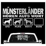 Schecker Autoaufkleber Hundeaufkleber Ideal Für Helle Autos Münsterländer Haustier