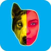 Face Turn Snap Dog