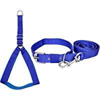 VIP COLLECTION Premium Strong Nylon Everyday Dog Collar Leash Buckle Dog Harness Combo Color Blue (S)