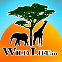 Wild Life io (Opoly-style Board Game)