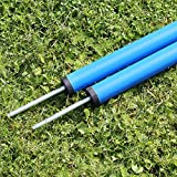 Superhund24 5 x Slalomstange 100 cm lang, ø 32 mm, in 3 Farben, für Agility-Taining (blau)