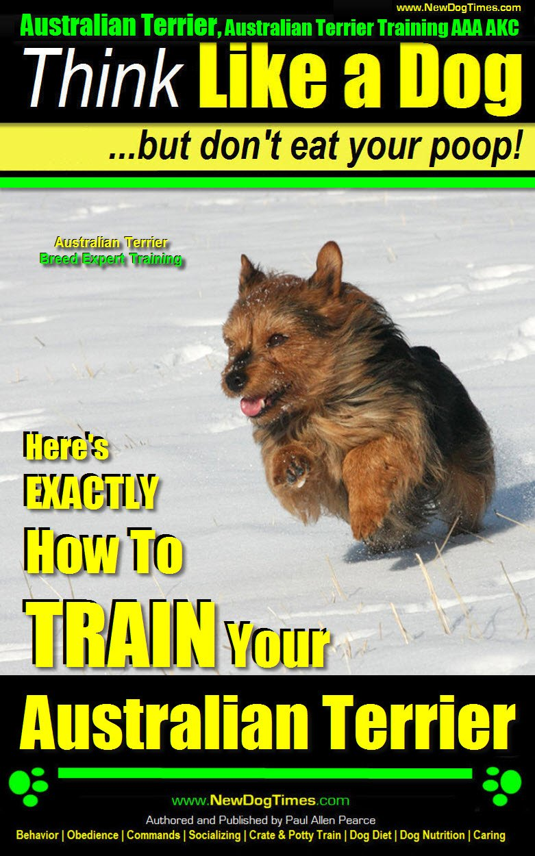 Australian Terrier, Australian Terrier Training, AAA AKC | Think Like a Dog, But Don't Eat Your Poop! | Australian Terrier Breed Expert Training |: Here's EXACTLY How To Train Your Australian Terrier