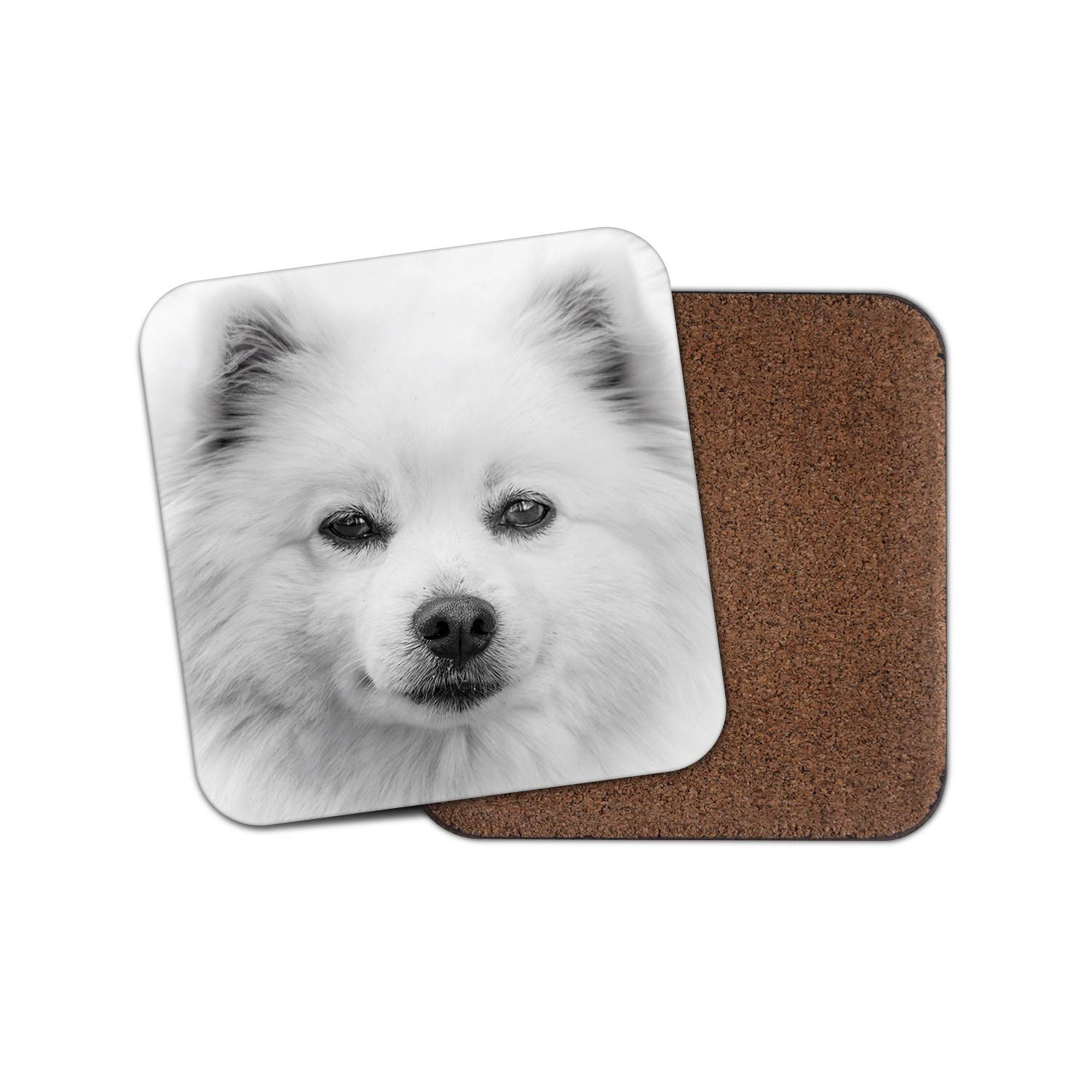 1 x American Eskimo Dog Coaster – Puppy Spitz White Cool Animals Pets Gift #15808