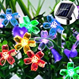 LiyuanQ Solar String Lights Outdoor Garden, Blossom Solar Garden Fairy Flower Lights 30 LED 8 Modes Waterproof String Lights
