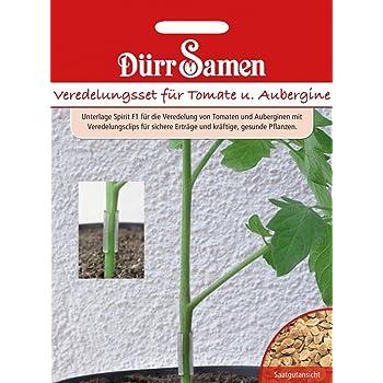 Dürr Samen Veredelungsset für Tomate und Aubergine