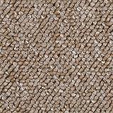 BODENMEISTER BM72392 Teppichboden Auslegware Meterware Schlinge beige 400 und 500 cm breit, Verschiedene Längen, Variante, 3 x 4 m