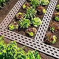 Beetplatten 10-er Packung von Ing. G. Beckmann KG - Du und dein Garten