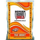 Berger Paints Home Shield Tile Grout (White, 1 Kg)