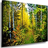 Boikal Leinwand Bilder Wald See Berge Bild 70x80cm Einteilig XXL Wandbilder Birkenwald Natur Landschaft Motive Größe Kunstdrucke Wählbar VI1P2-39F