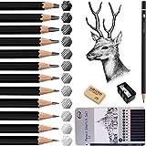 Crayon dessin, Surcotto 12 Crayons Graphite, Crayons à Papier, Crayons Croquis avec Gomme et Taille-Crayon 14B 12B 10B 8B 6B