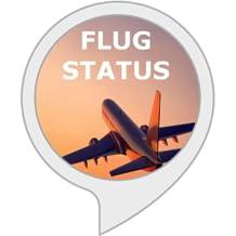 Flug Status