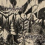 Panopticon & Waldgefluster [Vinyl LP]