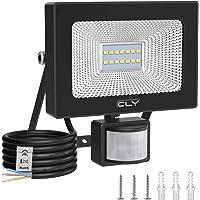 CLY 10W Projecteur LED Extérieur Détecteur de Mouvement Spot LED Extérieur Détecteur 6500K Blanc Froid, 2000LM Lumière…