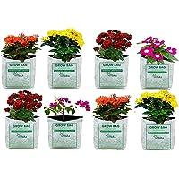 VITARA™ UV Treated Poly Grow Bags for Terrace Garden Vegetable , Plants and More(White Outside, Black Inside - 8 Bags…