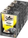 Sheba Adult Katzen-/Nassfutter Multipack, für erwachsene Katzen Selection in Sauce geflügel Variation, 48 Portionsbeutel (4 x 12 x 85 g)
