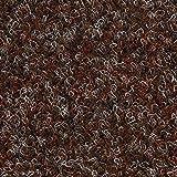 Kunstrasen Rasenteppich Fertigrasen Nadelfilz mit Noppen 6,5mm braun 200 und 400 cm breit, verschiedene Längen, Variante: 9 x 4 m