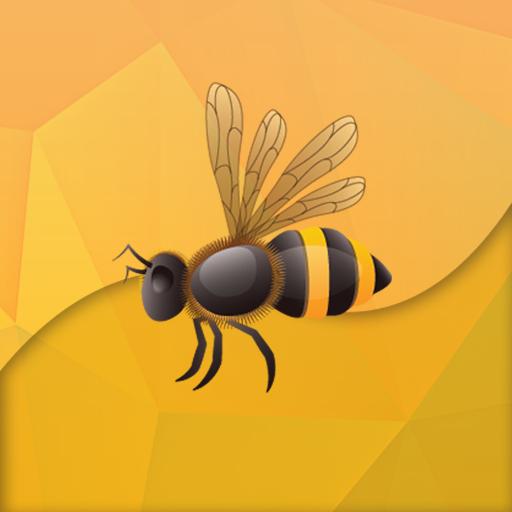 Flash Bee Innovationen Flash