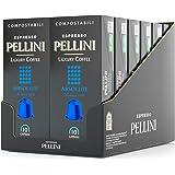 Pellini Caffè - Espresso Pellini Luxury Coffee Absolute - 120 Cápsulas (12 x 10) - Compatible Con Máquina Nespresso