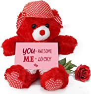 Tied Ribbons Best Valentines Day Gift for Wife - Gift Combo Pack Teddy Bear with Valentine's Special Greeting Card and Red R