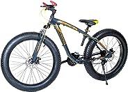 Aster Fat Bike