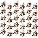 Chudian 30 Pezzi Spilla a Forma di Stella,Oro Distintivo della Stella con 5 Punte Spilla Pin Stella 1.8CM per Festa di Donne