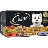 CESAR Les Recettes de Campagne - Barquettes de mini filets en sauce pour chien adulte aux 4 saveurs, 3 x 8 barquettes de 150g