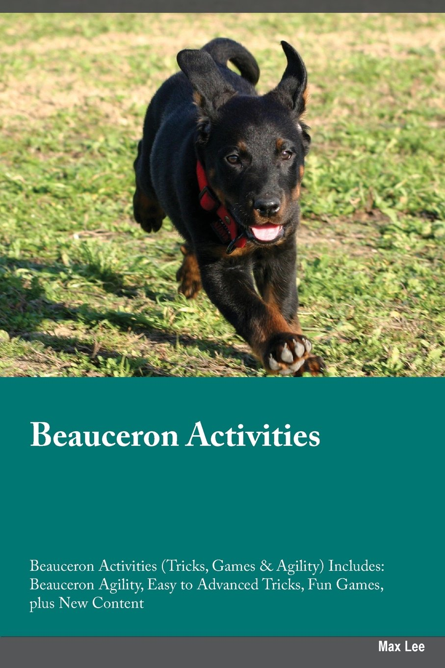 Beauceron Activities Beauceron Activities (Tricks, Games & Agility) Includes: Beauceron Agility, Easy to Advanced Tricks…
