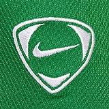 Nike Park Torwarttrikot 119836-377 - 2