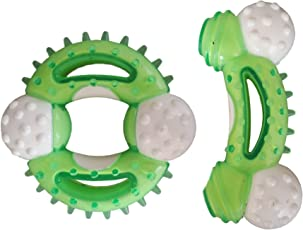 W9 High Quality Durable Nylon Non-Toxic Hard Chew Toys for Puppy -for Fun I Play I Chew I Fetch (Green)