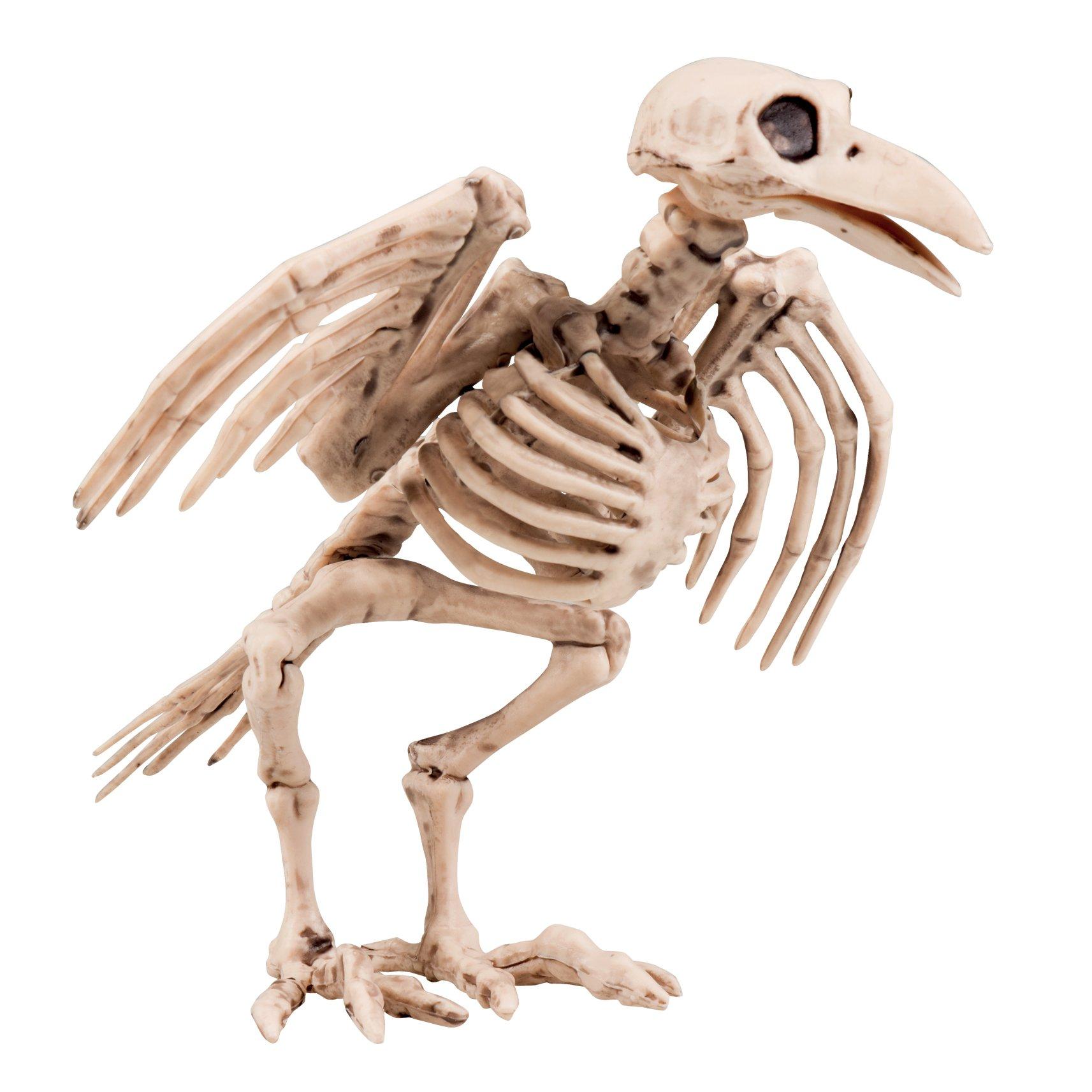 Boland 72093 - Deko-Figur Krähenskelett, Größe ca. 18 cm, aus Kunststoff, Knochen, Skelett, Dekoration, Halloween…