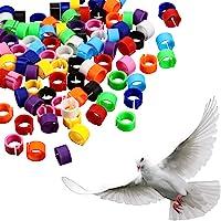 300 Pièces 8 mm Jambe d'Anneau d'Oiseau Bague de Pied de Pigeon Multicolores en Plastique Clip sur les Anneaux de Jambe…