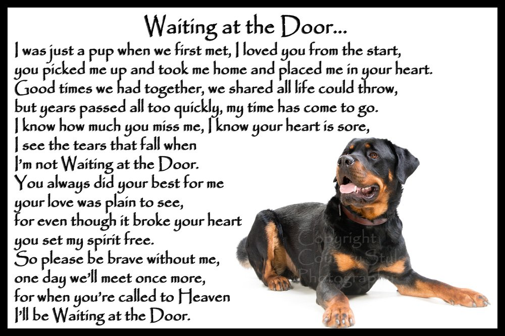 Rottweiler dog bereavement pet loss Flexible Fridge Magnet – Waiting at the Door