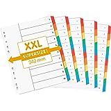 perfectline 5 pièces, 10intercalaires DIN-A4 EXTRA LARGE, couleur avec page de garde (5x10), 24 x 29,7 cm, XXL séparateurs
