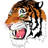 Tiger Browser