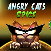 Angry Cat Space