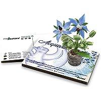 Eco-Postcard   Biglietto d'auguri segno zodiacale Acquario   Regalo compleanno ecologico zodiaco con semi di Borragine…
