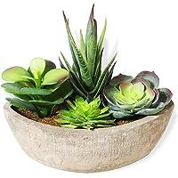 HAUSPROFI 4 en 1 Mini Plante Artificielle en Pot Intérieur Extérieur Succulentes Plantes Grasses pour Maison,Balcon…