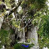 Aotearoa. Acoustic nature walks.: New Zealand. Fieldrecordings.