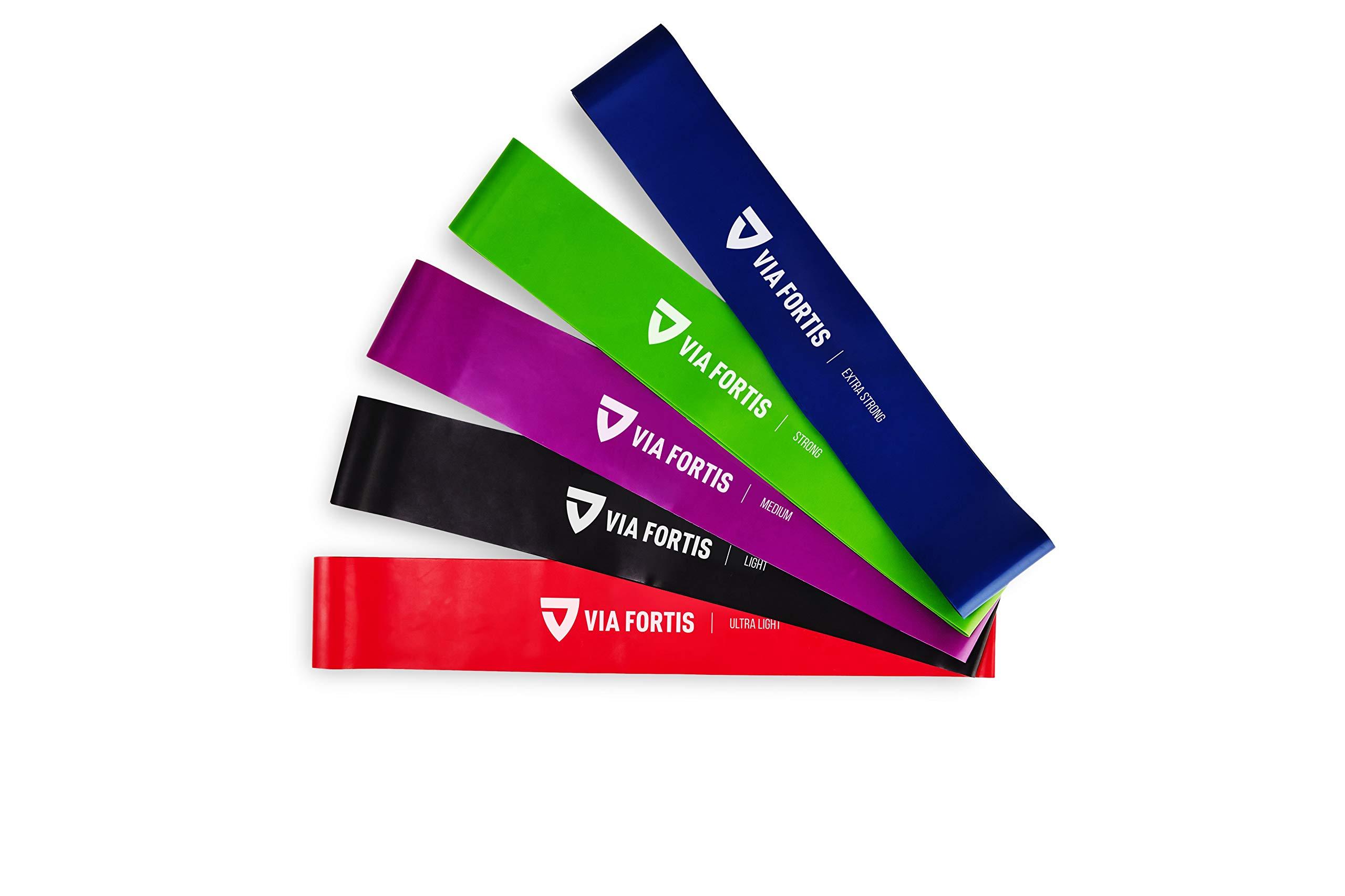 VIA FORTIS Gomas elasticas Fitness Conjunto de 5 Bandas elasticas musculacion para su Entrenamiento en casa – con el Plan de Entrenamiento y la Bolsa
