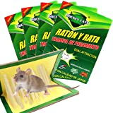 Panngu 4 Pièces l' écolo Piège à Rats, Professionnel Pièges à Souris, Dératisation Rapide Plaques Collantes Sourie, Puissant