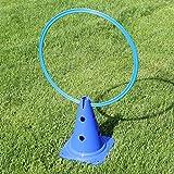 Bild: KombiKegel 30 mit KombiRing 50 cm in 4 Farben für Agility  Hundetraining blau