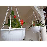 ROCHFERN Plastic Hanging Pot, White, Open Diameter - 19.5cm, Bottom Diameter - 12cm, Height - 11.5 cm