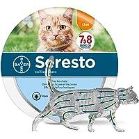 Collier Anti puces pour Chat, protège Le Chat Contre Les puces et Les tiques jusqu'à 8 Mois
