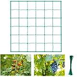 Halcyerdu Filet à Plantes grimpantes, Filet de Treillis, pour récolte de concombres, Légume, Vignes, Plantes Grimpantes, Tail