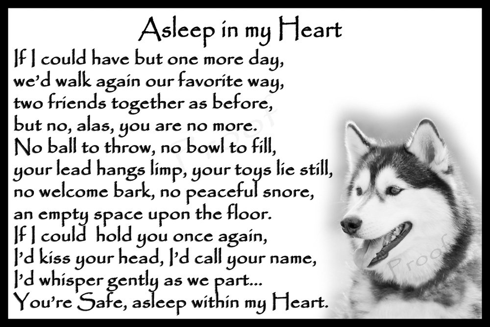 Siberian Husky Pet Dog Sympathy Memorial Fridge Magnet card – Asleep in my Heart