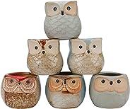 Tinweety Flower Pot,6 Pcs 2.5 Inches Owl Pots Little Ceramic Succulent Bonsai Pots with a Hole Plant Pot Flower Pot Container